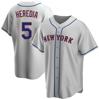 Youth New York Mets Guillermo Heredia Gray Road Jersey - Replica